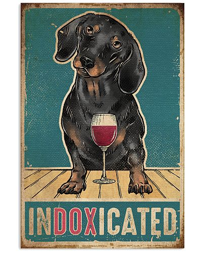 Dog Dachshund Indoxicated