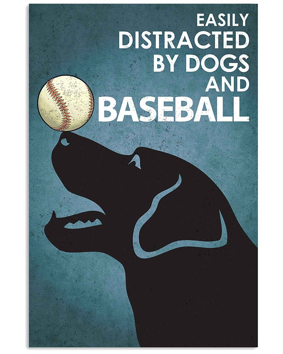 Dog Labrador And Baseball 16x24 Poster