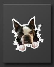 Funny bostie breaking glass Sticker - Single (Vertical) aos-sticker-single-vertical-lifestyle-front-08