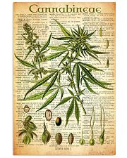 Cannabineae 11x17 Poster front