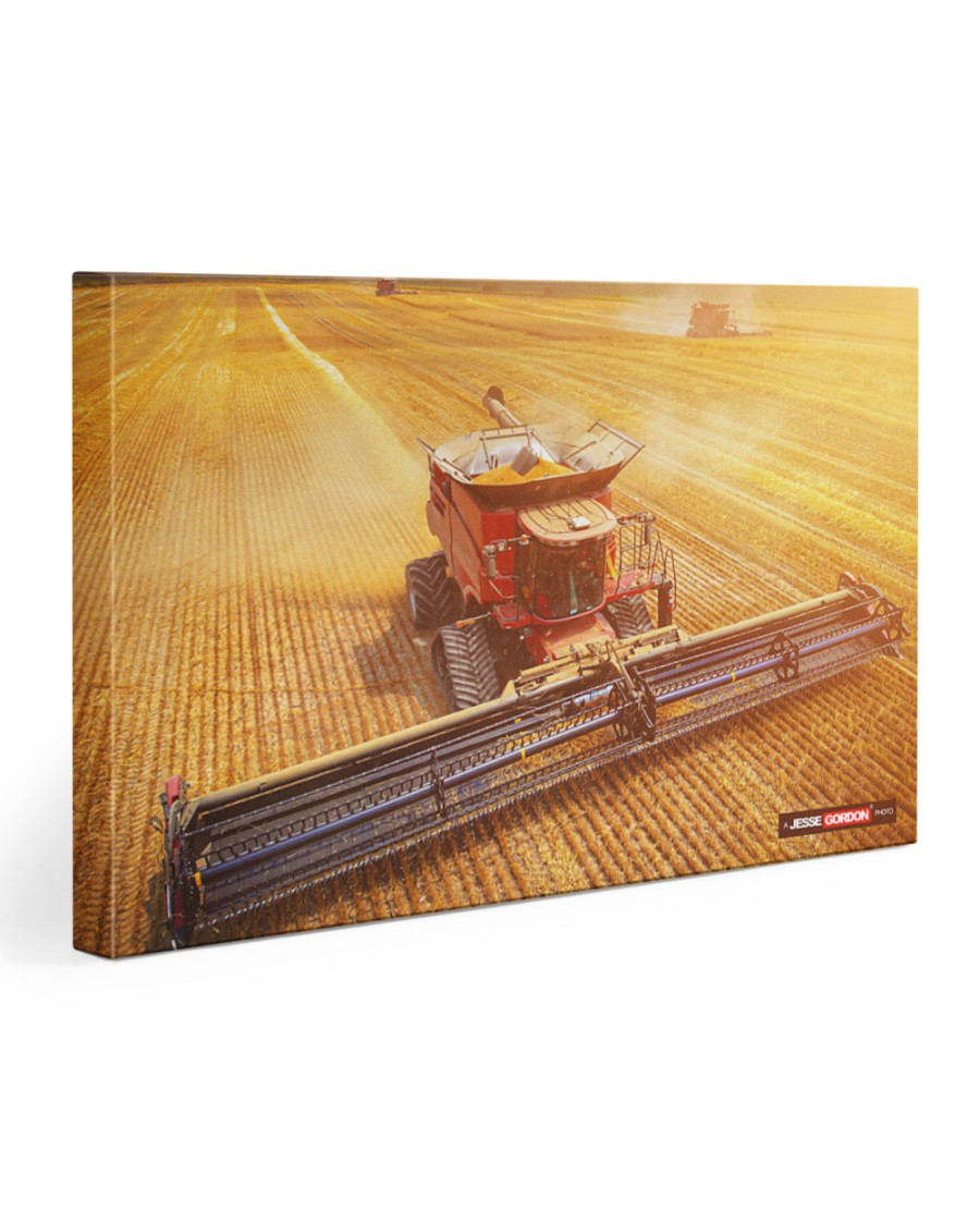 Dennis Grain and Farms Harvest 1 30x20 Gallery Wrapped Canvas Prints