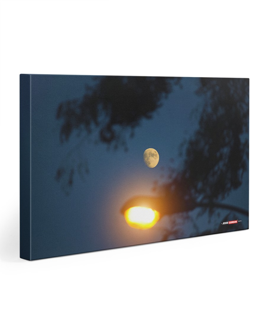 The Night Lit By Moon and Street Lamp 30x20 Gallery Wrapped Canvas Prints