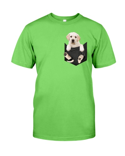 Labrador in Pocket