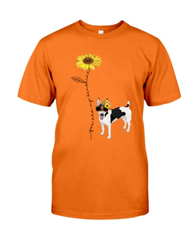 You Are My Sunshine RAT TERRIER