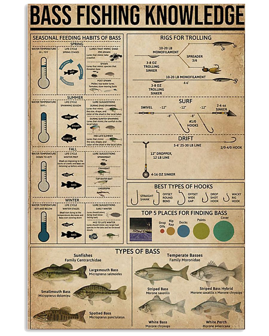 Bass fishing knowledge 16x24 Poster