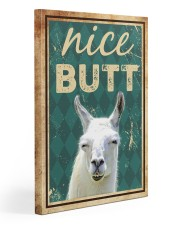 Llama Nice Butt 20x30 Gallery Wrapped Canvas Prints front