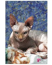 Sphynx cat 24x36 Poster front