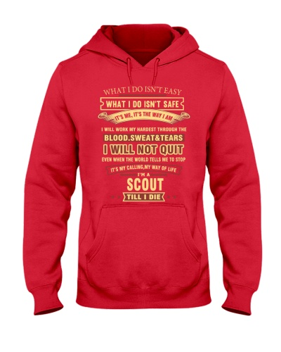 I'm A Scout