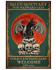 SALEM SANCTUARY FOR WAYWARD CATS 11x17 Poster thumbnail
