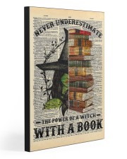 A WITCH WITH A BOOK 20x30 Gallery Wrapped Canvas Prints front