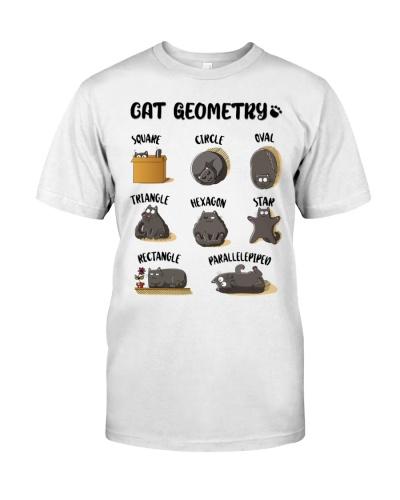 Math Teacher Cat Geometry