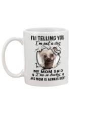 Chinese Crested Dog Telling Mug back
