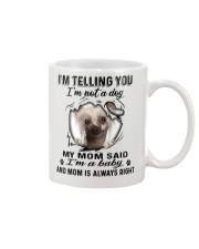 Chinese Crested Dog Telling Mug front