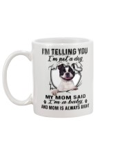 Boston Terrier Telling Mug back