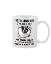Boston Terrier Telling Mug front