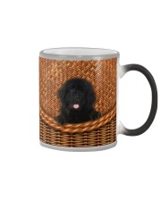 Newfoundland Rattan Color Changing Mug thumbnail