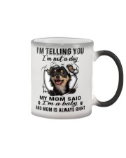 Chihuahua Telling Color Changing Mug tile