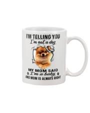 Pomeranian Telling Mug front