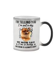 Pomeranian Telling Color Changing Mug thumbnail