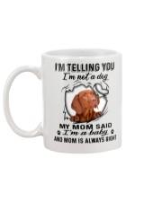 Vizsla Telling Mug back