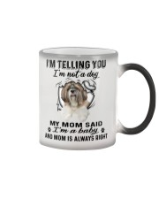 Shih Tzu Telling Color Changing Mug thumbnail