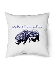 "My Prick My Friend Indoor Pillow - 18"" x 18"" thumbnail"