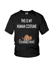 This is My Human Costume I'm Actually a Ferret Youth T-Shirt thumbnail