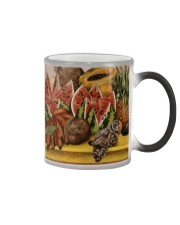 fanlovefk-49 Color Changing Mug thumbnail