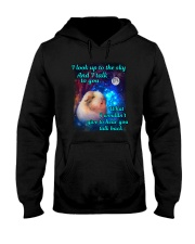 I Look Up To The Sky Hooded Sweatshirt thumbnail