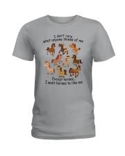 I Want Horses To Like Me Ladies T-Shirt thumbnail