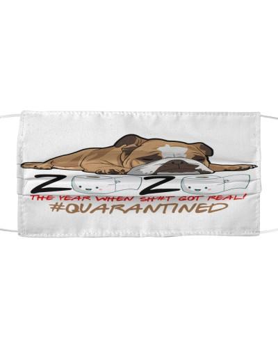 Bulldog Quarantined 2020