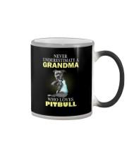 Pitbull 2 Color Changing Mug thumbnail
