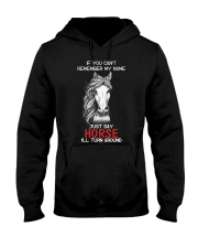 If You Can'T Remember My Name Just Say Horse Hooded Sweatshirt thumbnail