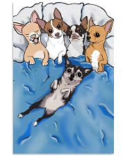 Chihuahua sleep edition 11x17 Poster front
