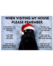 Cat when visiting my house 17x11 Poster front