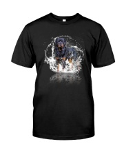 rottweiler size ao Classic T-Shirt front