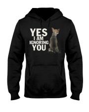 Yes I Am Ignoring You Chihuahua IGNORING 2 Hooded Sweatshirt thumbnail