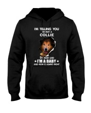 I'm telling you i'm not a collie Hooded Sweatshirt thumbnail