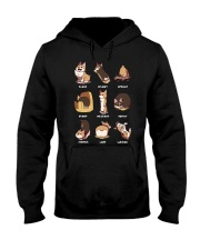 corgi boc Hooded Sweatshirt thumbnail