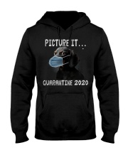 Picture It Quarantine 2020 dachshund Hooded Sweatshirt tile