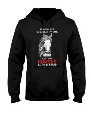 If You Can'T Remeber My Name Just Say Horses Hooded Sweatshirt thumbnail