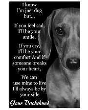 I Know I'm Just Dog But Dachshund Text 3 11x17 Poster front