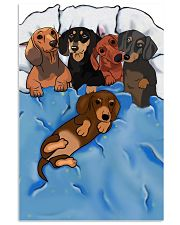 Dachshund  Cute 11x17 Poster front