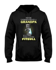 pitbull 1 Hooded Sweatshirt thumbnail