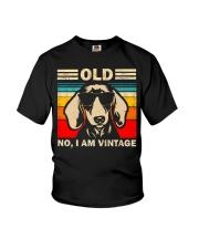 Dachshund 1  Youth T-Shirt thumbnail