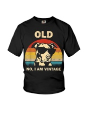 PITBULL old 2 Youth T-Shirt thumbnail