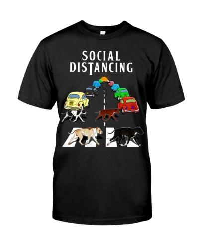 Social Distancing Pitbull