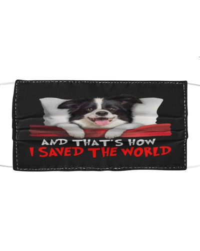 Dog Border Collie How I Saved The World