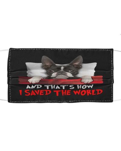 Dog Boston Terrier How I Saved The World