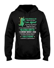 Your Opinion Of Me Means Nothing Dinosaur  Hooded Sweatshirt thumbnail